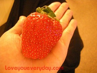 korea-stawberry