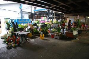 ตลาดดอกไม้ ฮ่องกง